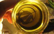 El gobierno nacional reglamentó el uso del cannabis medicinal