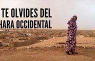 Colonias en africa en el Siglo 21: