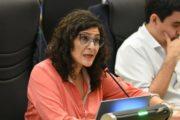 Caso Bocacha: el Concejo municipal renovó pedido de informe sobre patovicas